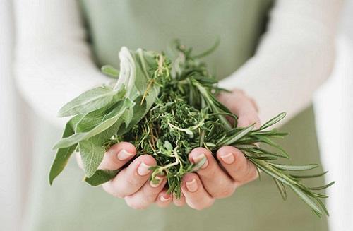 Как лечить гипертонию травами
