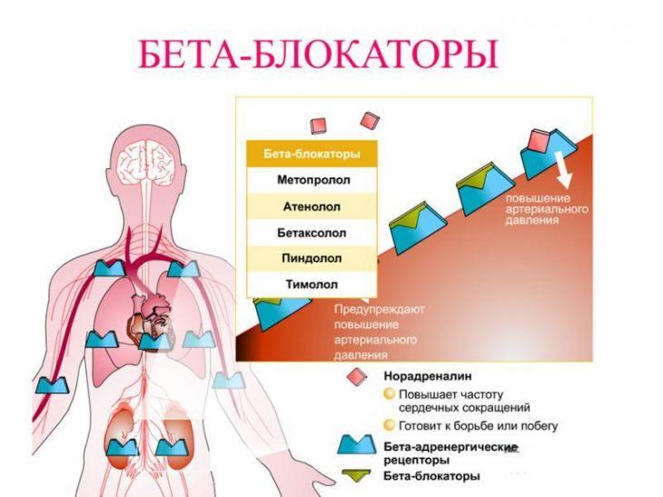 Адреноблокаторы при гипертонии: альфа и бета препараты