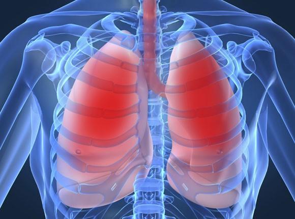 Онкология, а именно рак легких, печени, почек и крови