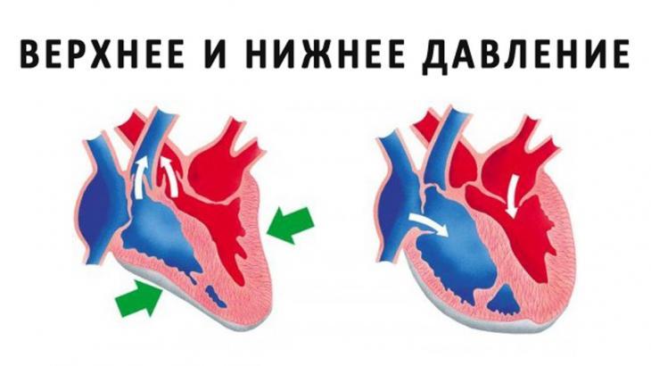 Изображение - Нормальное давление у ребенка 12 лет _15257334952